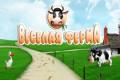 Веселая ферма | Флеш игры | Flash games | Симы