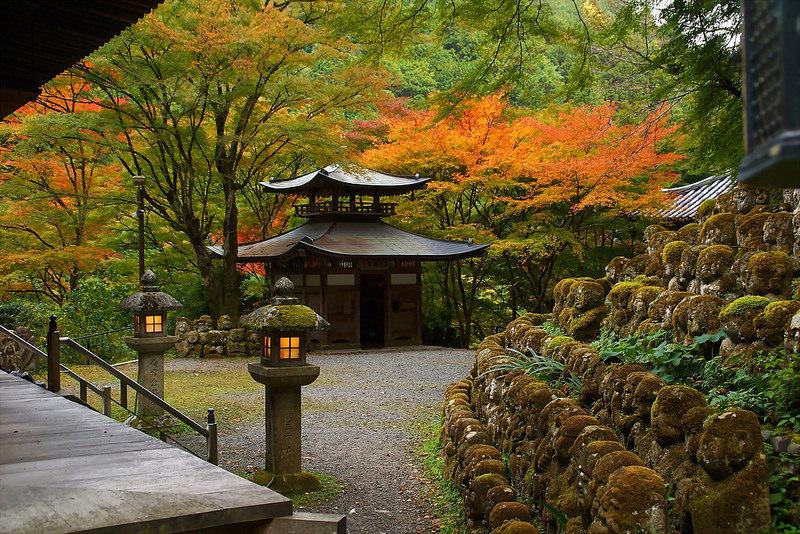 愛宕念仏寺の秋