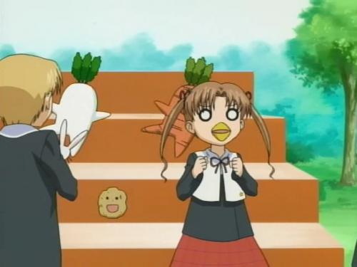 Аниме -             Anime - Campus Alice - Школа Элис [2004]