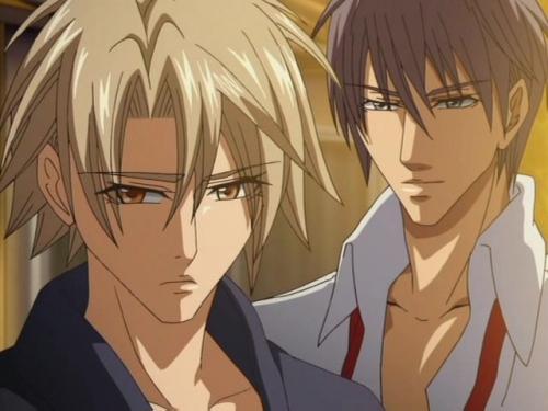 Аниме - Anime - Beautiful Daddy - Kirepapa [2008]