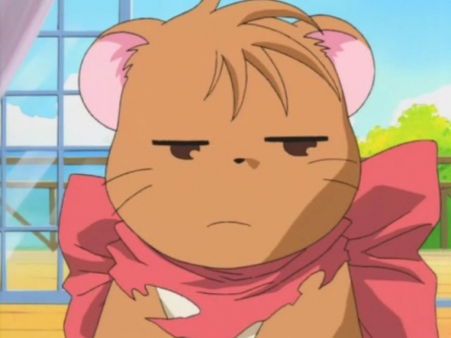 Аниме -             Anime - Magical Meow Meow Taruto - Волшебная Девочка-Кошка Таруто             [2001]