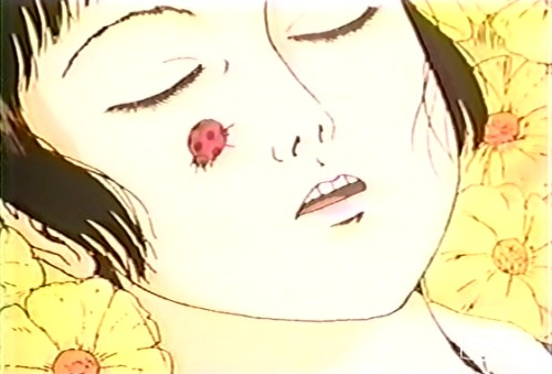 Аниме - Anime - Midori - Мидори [1992]