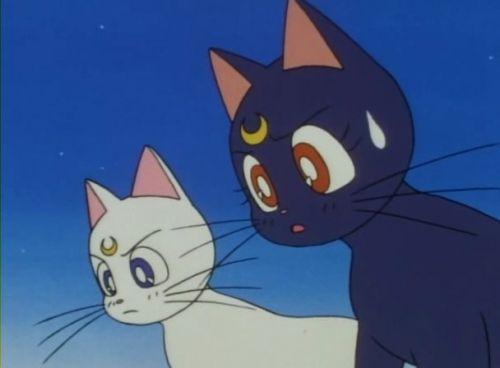 Аниме - Anime - Sailor Moon R - Красавица-воин Сейлор Мун Эр