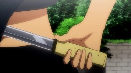 Аниме - Anime - 閃乱カグラ - Senran Kagura [2013]