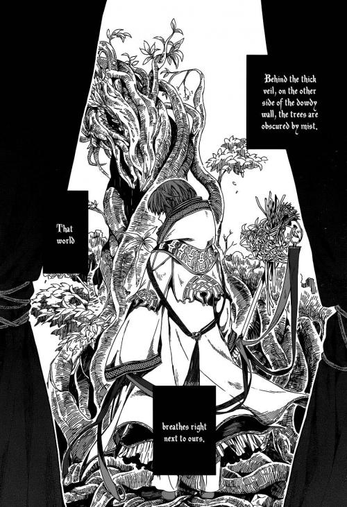 Манга - Manga - невеста чародея, mahou tsukai no yome, the ancient magus bride -