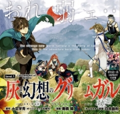 Grimgar of Fantasy and Ash, Hai to Gensou no Grimgar, Гримгал пепла и иллюзий, манга, manga