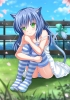 Anime CG Anime Pictures      183100 blue hair blush green eyes long neko mimi ribbon sakura skirt sky smile tail thigh highs картинка аниме anime picture