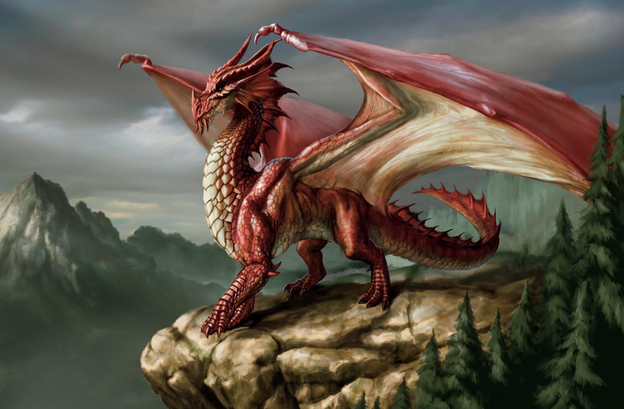 фото картинка драконы дракон