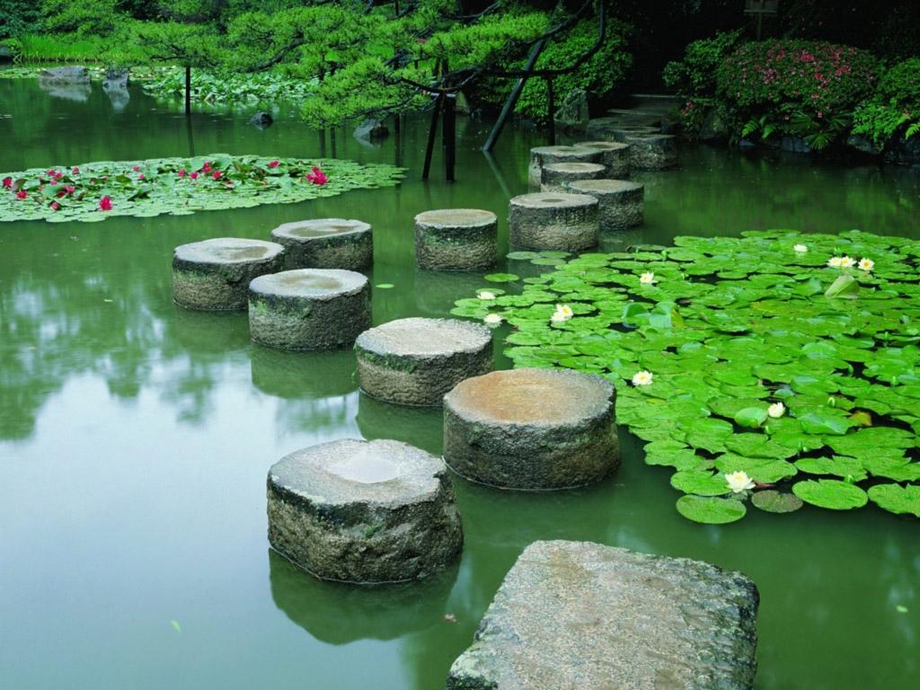 Japanese garden water
