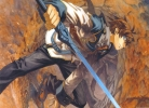 Chrome Shelled Regios 41 Chrome Shelled Regios