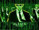 Bleachix